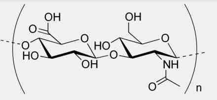 Kwas hialuronowy - glikozoaminoglikan (rodzaj polisacharydu),